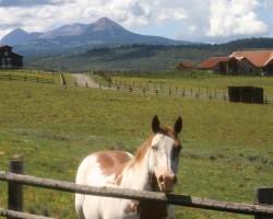 Mesas & Ranches Descriptions