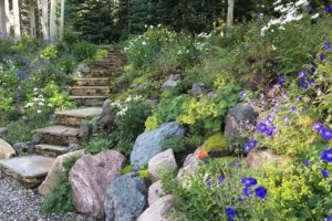 Landscaped steps to Ski Ranches home