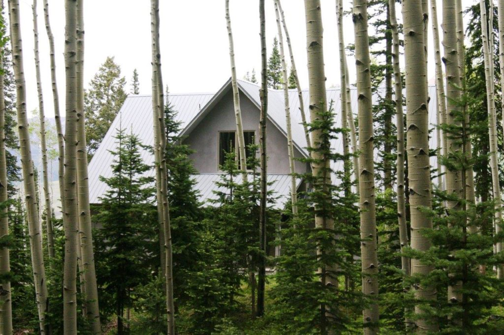 Forested view of Ski Ranches home
